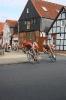 Tour de Wendlang_10
